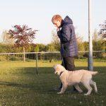 Puppy kijkt naar baasje